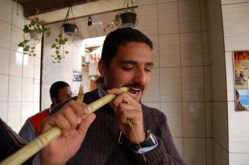 Qasab in Kairo (c) Hannah Scharlau