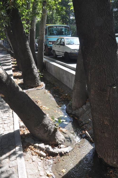 Djoub in Teheran Copyright Ekkehart Schmidt-Fink