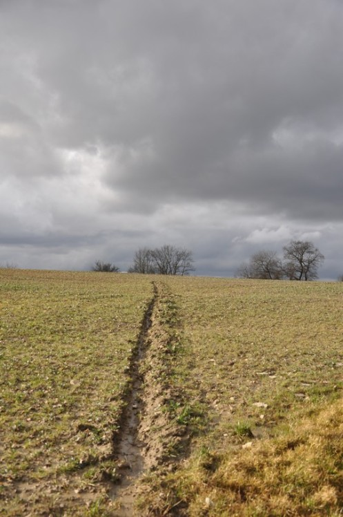 Unwetter am Dragonerweg © Ekkehart Schmidt