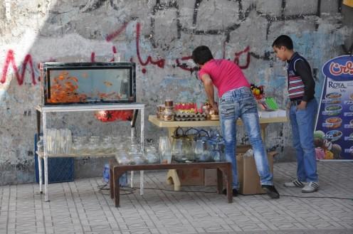 Goldfische zu Nowruz © Ekkehart Schmidt