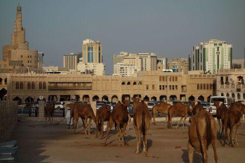 120927-doha-qatar-00904