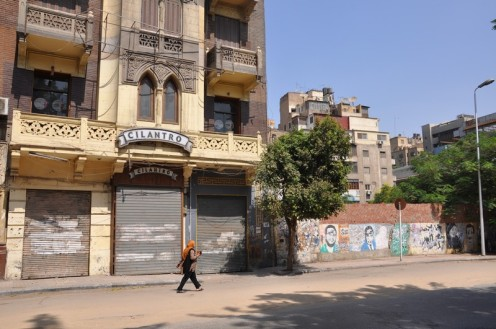 Cilantro Kairo (c) Ekkehart Schmidt