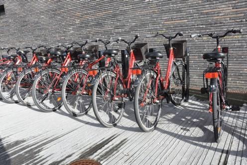 Bedwood Hostel_Kopenhagen (c) Ekkehart Schmidt