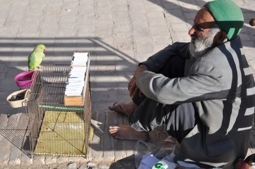 Das Vogelorakel von Yezd ⓒ Ekkehart Schmidt
