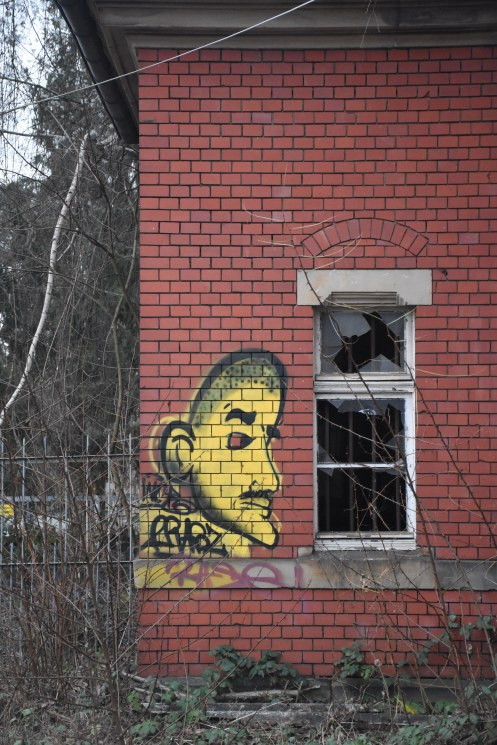 A yellow face in Lusienthal © Ekkehart Schmidt